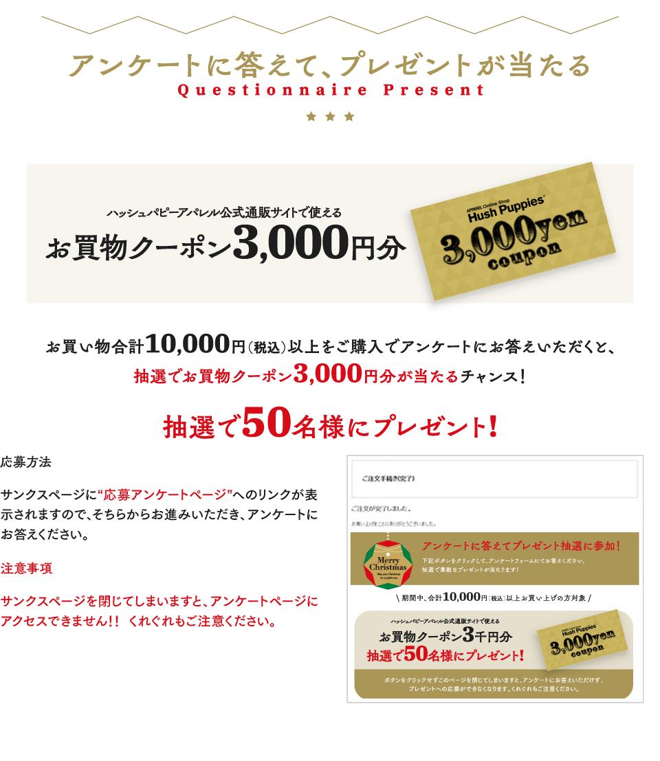 合計10,000円以上ご購入でアンケートにお答えいただくと、抽選で3,000円分のクーポンが当たるチャンス!