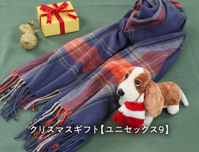 クリスマス限定特別ギフト09